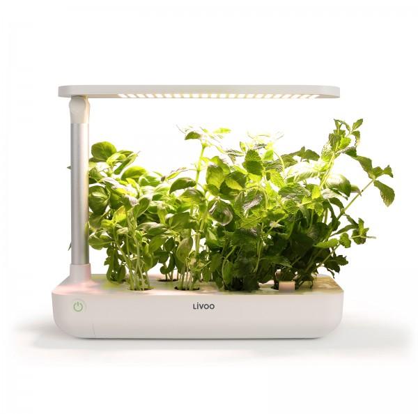 LIVOO Indoor-Garten Besonnungslampe LED Gartenset LH102